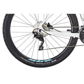Serious Provo Trail 650B White Glossy